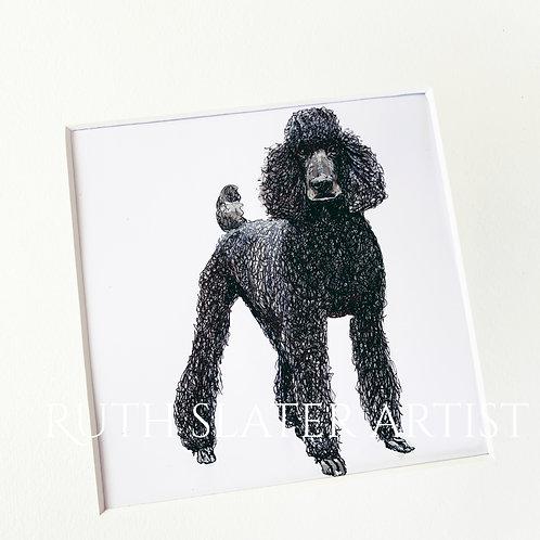 Standard Poodle Original