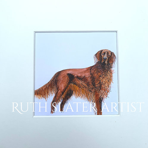 Irish Setter Original