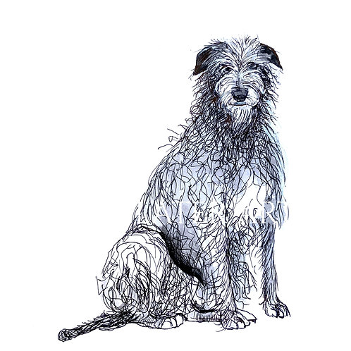 Deerhound (sitting) Original