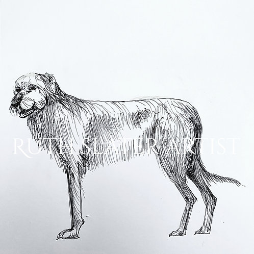 Irish Wolfhound Original