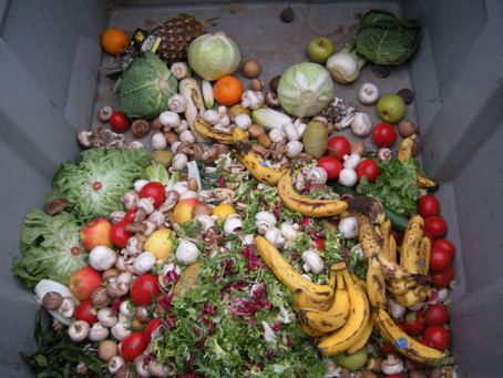 How to reduce food waste: organise, categorise and love your leftovers