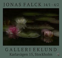 JFGalleriEklundNäckrosorFW2.jpg