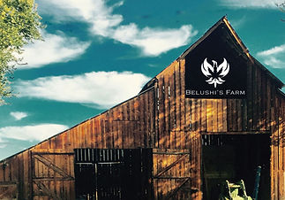 Barn-with-logo.jpg