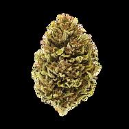 Purple-Pineapple-Afghani.png