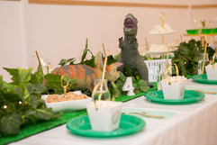 diniozaur little party house zena photog