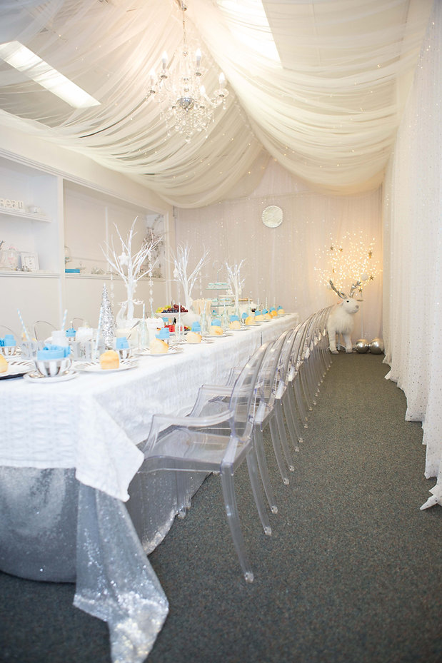 frozen birthday party zena photography (