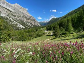 Trilhas que atravessam a fronteira da Itália com a França: Valle Stretta, Lac Vert e Mont Thabor
