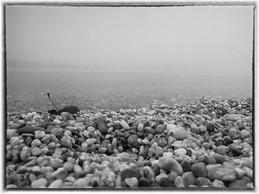 Jeseň na jazere. Kamienkový breh so spadnutým listom. Slnečné jazerá v Senci.