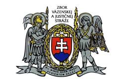 ZVaJS-logo
