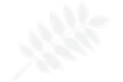 Franche Leaf 2.png