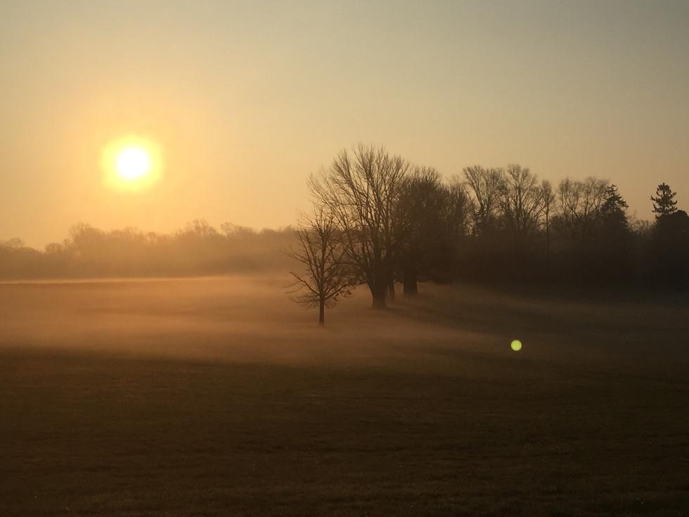 Princeton Morning