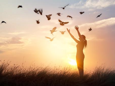 Perdonar - Amar - Liberar