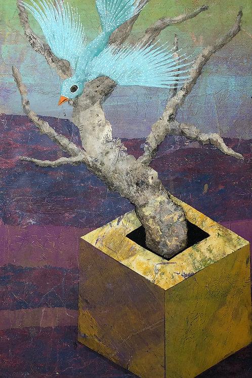 Adam Cooley「Blue Love Bird」