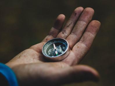Navigating Purpose