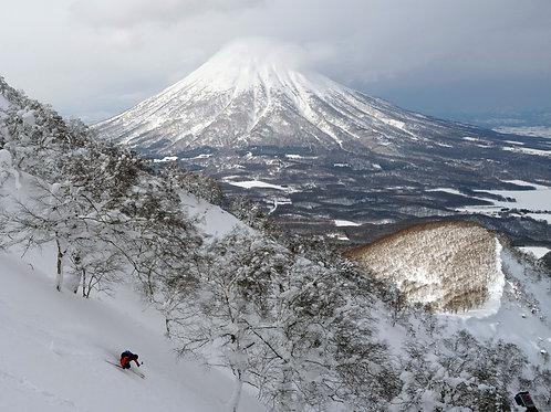 Japon - 5 au 14 janvier 2019