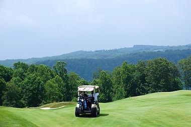 golf cart.jpeg