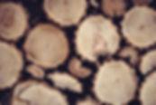 pile of logs.jpg