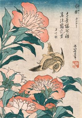 Hokusai - stampa bird and flowers