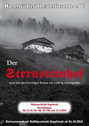 2015_Sternsteinhof-Plakat.jpg