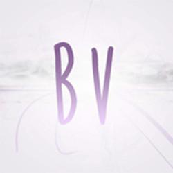 Blog com V