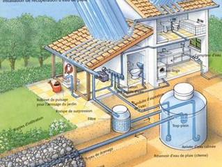 8 conseils pour récupérer l'eau de pluie