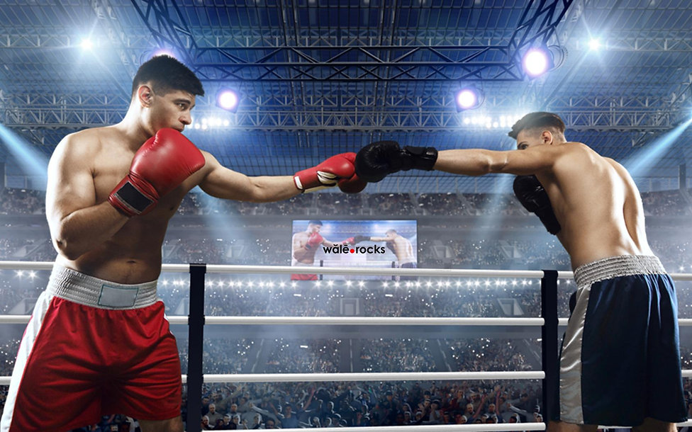 boxing-WR-150-j.jpg