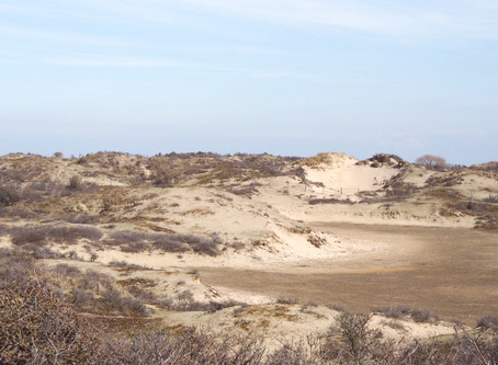 Strandlocatie