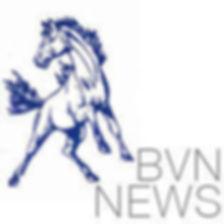 BVNNews.jpg
