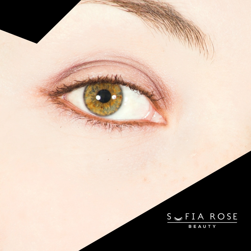 SOFIA ROSE BEAUTY _ JANUARY BLOG POST _ HOW TO GROW BACK BALD SPOTS IN EYEBROWS