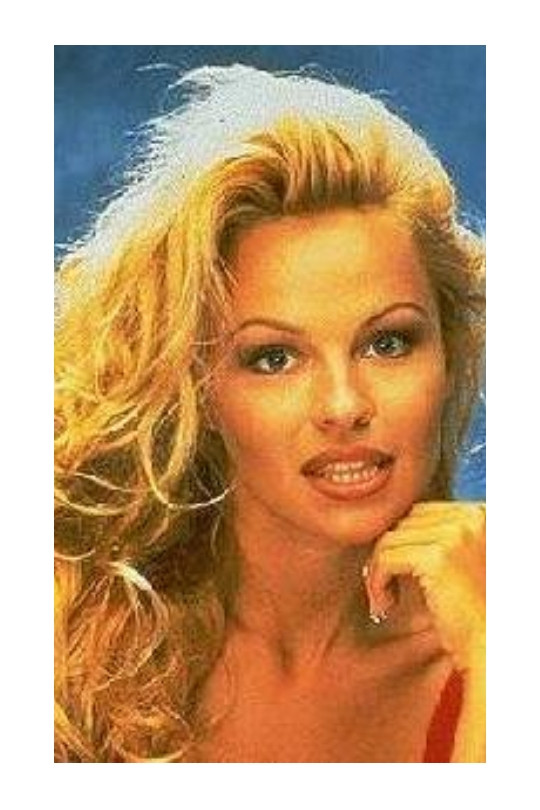 EYEBROW TRENDS OVER THE YEARS | 1990s PAMELA ANDERSON | SOFIA ROSE BEAUTY | Pic credit: unknown