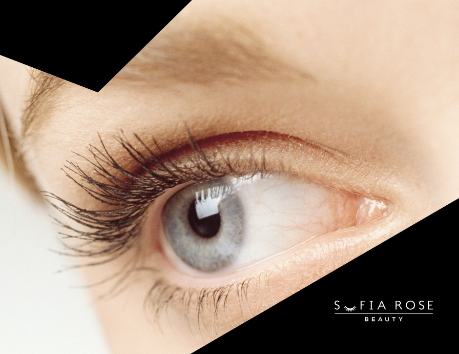 Lash health the lash cycle explained - June Blog Post-Sofia Rose Beauty-Widnes