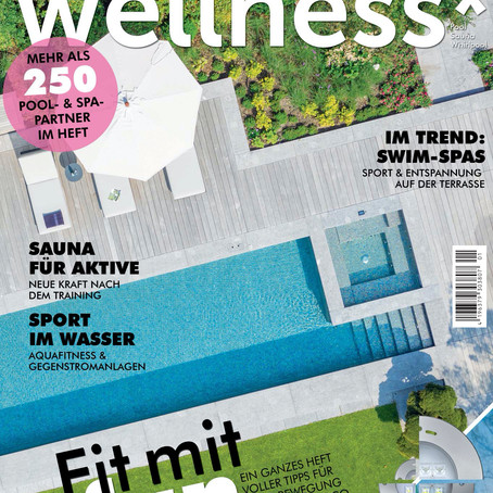Our Poolhouse Addition in February's Haus+Wellness