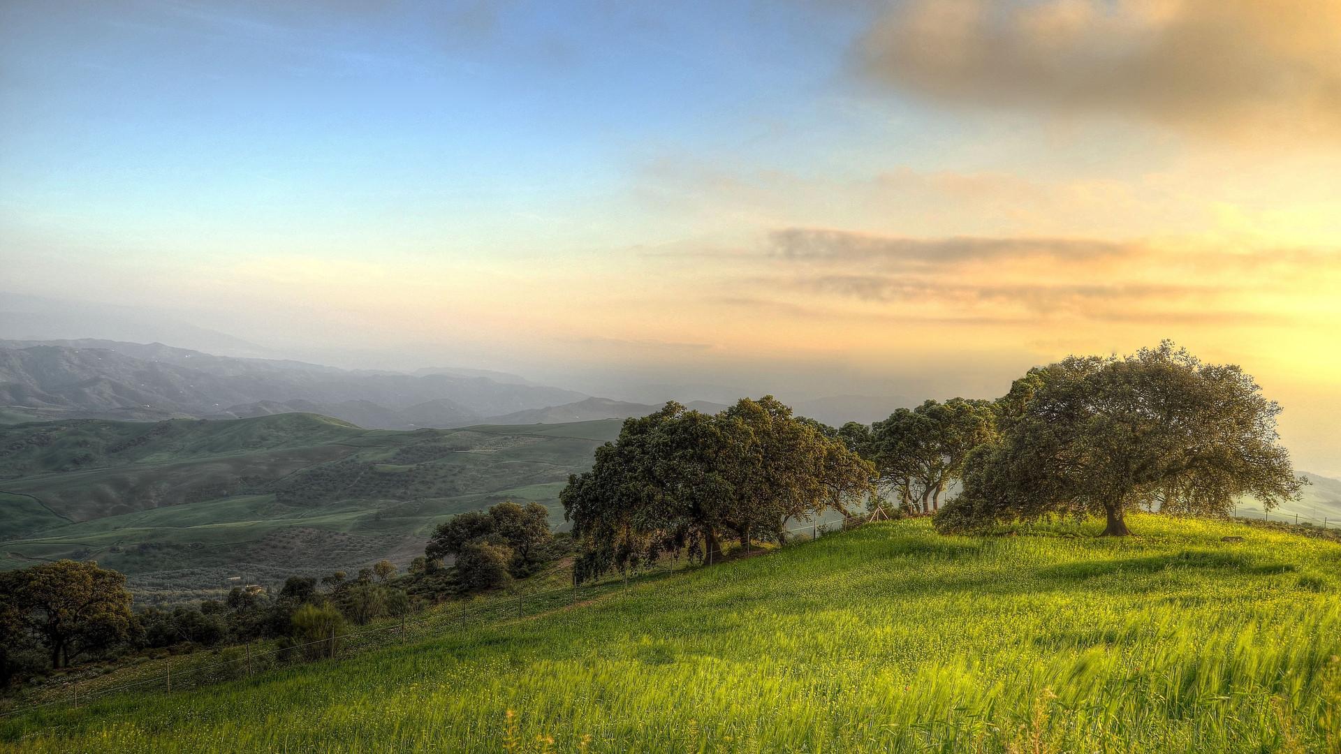 countryside-dawn-field-164025.jpg