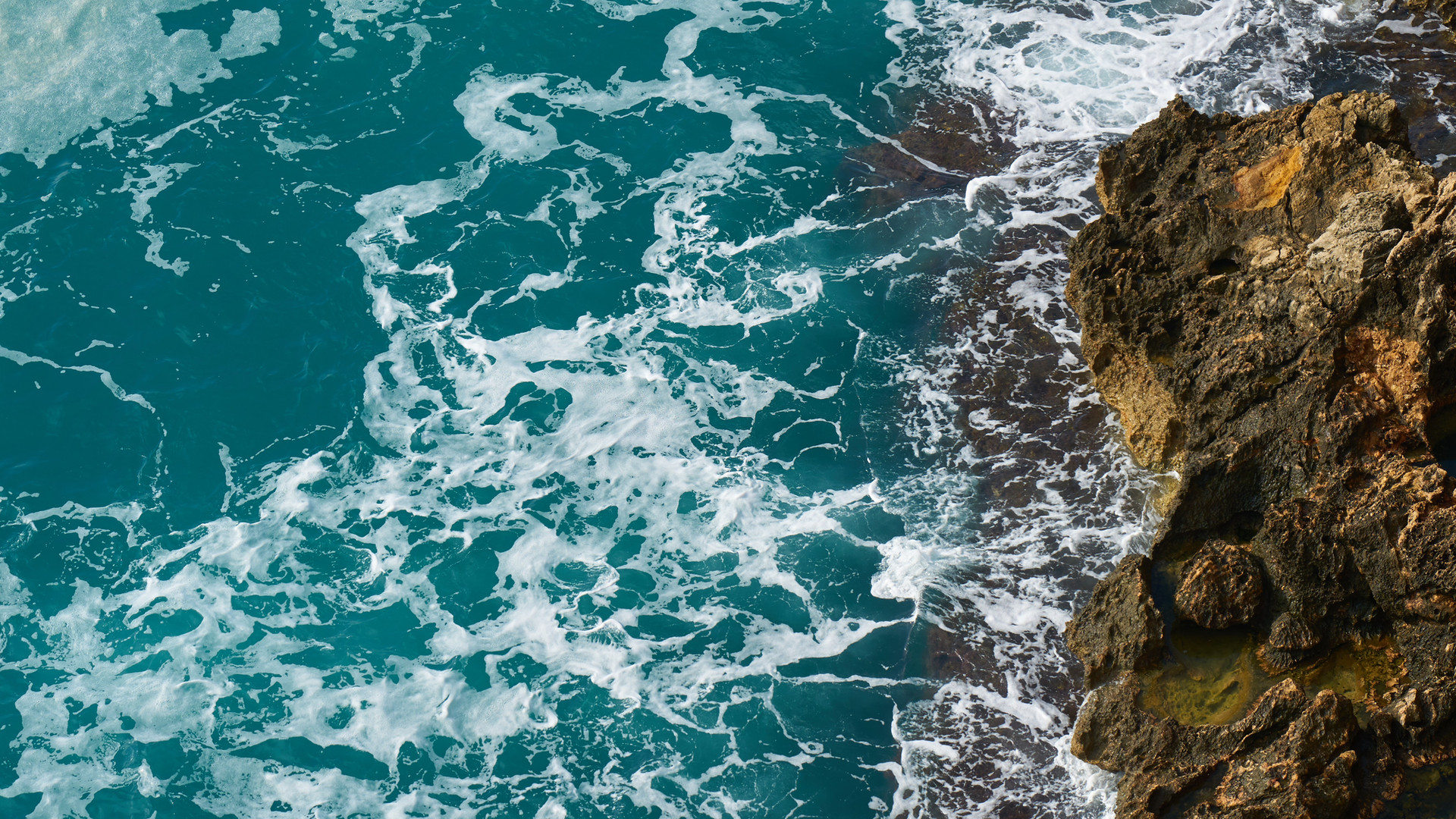 aerial-shot-bird-s-eye-view-coast-177163