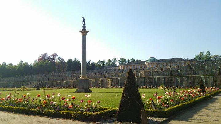 サン・スーシ宮殿庭