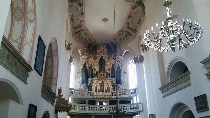 ナウムブルク_ヴェンツェル教会のヒルデブラント製オルガン