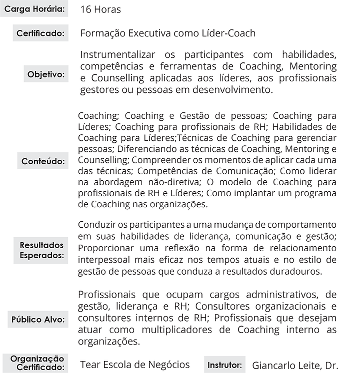 Lider Coach site.png