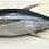 Thumbnail: Yellowfin tuna