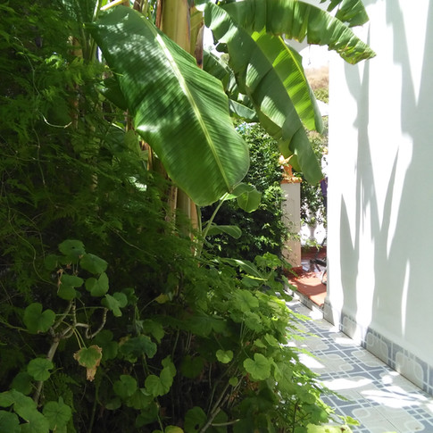 Casa Rural Villa Belydana Porche Vista Pequeño Jardin