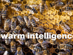 Clients want to tap into swarm intelligence