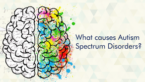 What are the Causes for Autism?