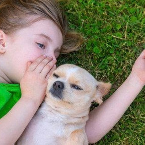 Are Pets Good for Children with Autism?