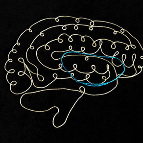The Link Between OCD and Autism