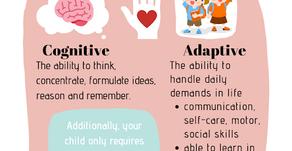 Mainstream School Assessment Criterias