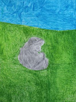 Monkey Sitting On The Grass
