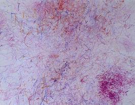 Violet impression