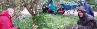 gardening-in-rain3.jpg