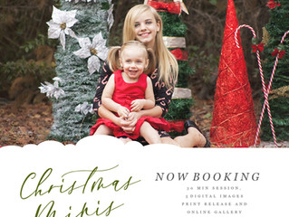 ⭐️ HOLIDAY MINIS ARE BOOKING ⭐️