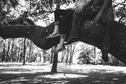 Sitting in a Tree K.I.S.S.I.N.G