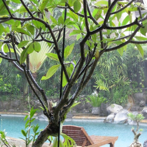 Bali in the Rain